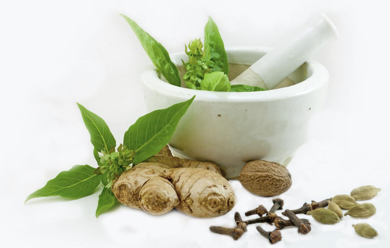 Powerful Medicinal Plants Suplimente Nutritive